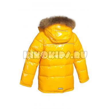 Зимняя куртка KIKO для мальчика ЕВГЕНИЙ (горчица), 5-9 лет
